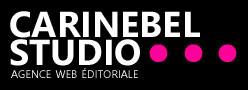 agence editoriale annecy - agence web annecy